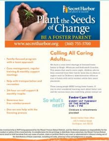 Flyer for Secret Harbor foster care